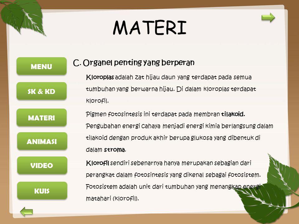MENU SK & KD MATERI ANIMASI KUIS VIDEO MATERI C. Organel penting yang berperan Kloroplas adalah zat hijau daun yang terdapat pada semua tumbuhan yang