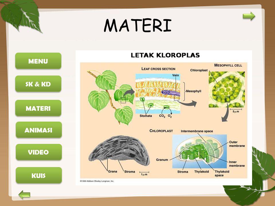 MENU SK & KD MATERI ANIMASI KUIS VIDEO MATERI