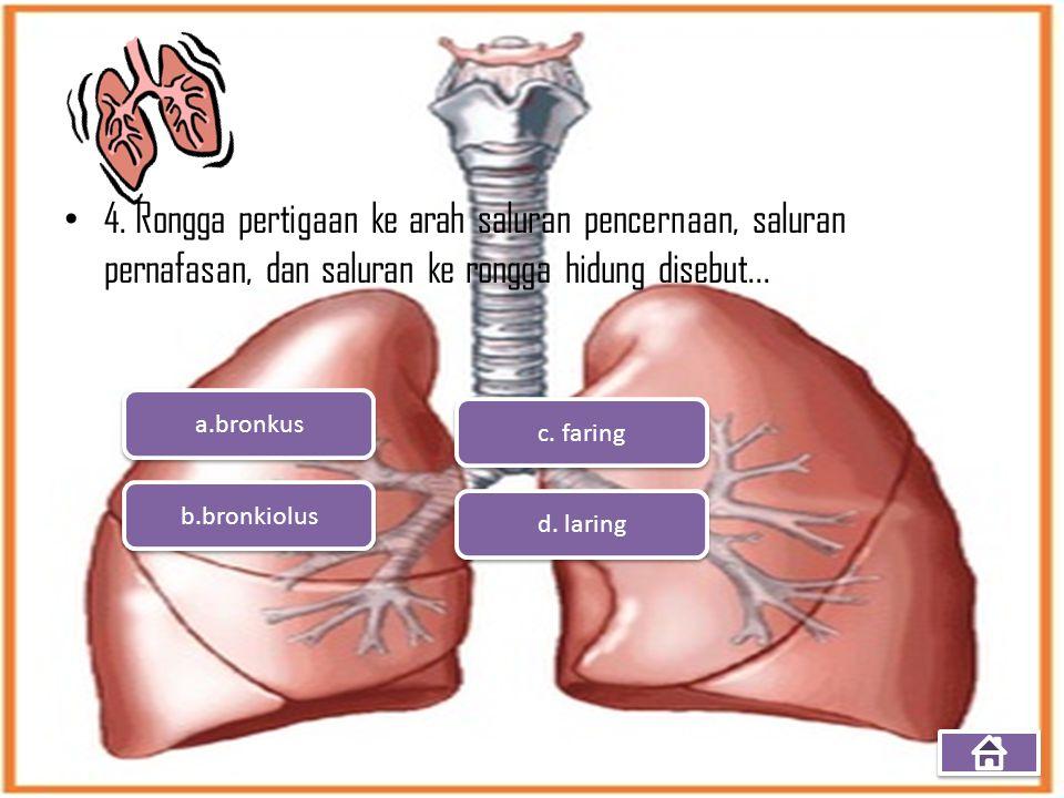 4. Rongga pertigaan ke arah saluran pencernaan, saluran pernafasan, dan saluran ke rongga hidung disebut... a.bronkus b.bronkiolus d. laring c. faring