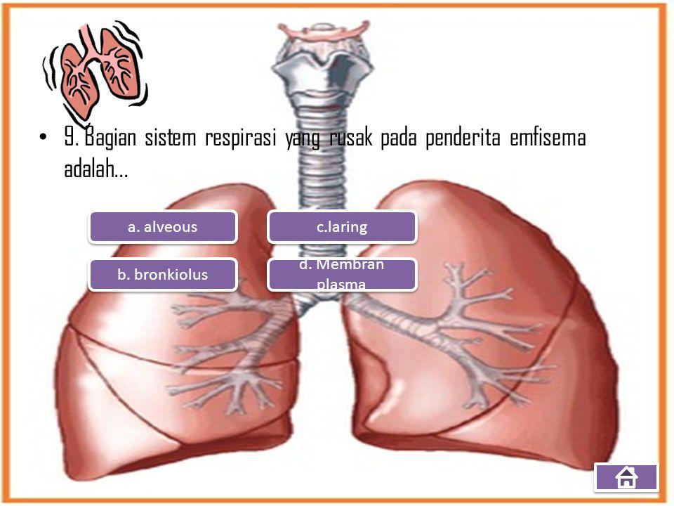9. Bagian sistem respirasi yang rusak pada penderita emfisema adalah... a. alveous b. bronkiolus d. Membran plasma d. Membran plasma c.laring