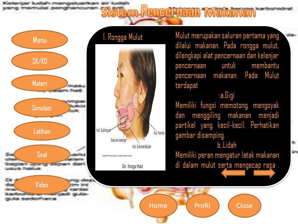 Menu HomeProfilClose Materi Simulasi Latihan Soal SK/KD Video 1. Rongga Mulut Mulut merupakan saluran pertama yang dilalui makanan. Pada rongga mulut,