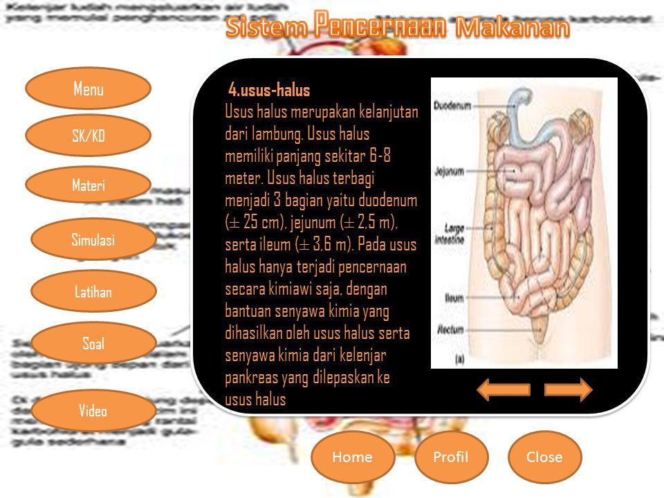 Menu HomeProfilClose Materi Simulasi Latihan Soal SK/KD Video 4.usus-halus Usus halus merupakan kelanjutan dari lambung. Usus halus memiliki panjang s