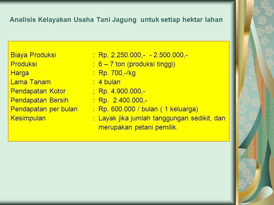 Analisis Kelayakan Usaha Tani Jagung untuk setiap hektar lahan Biaya Produksi: Rp.