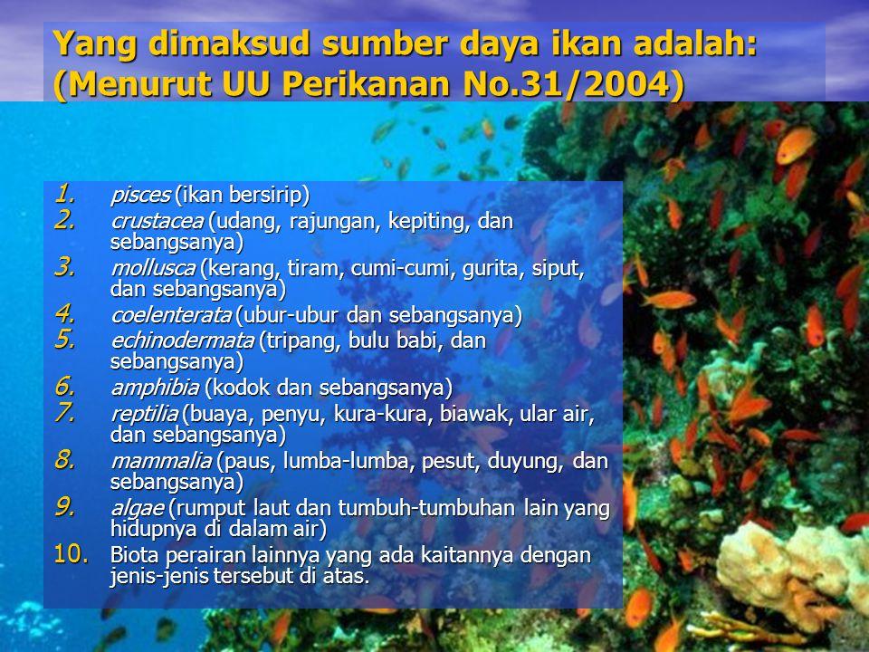 Yang dimaksud sumber daya ikan adalah: (Menurut UU Perikanan No.31/2004) 1. pisces (ikan bersirip) 2. crustacea (udang, rajungan, kepiting, dan sebang