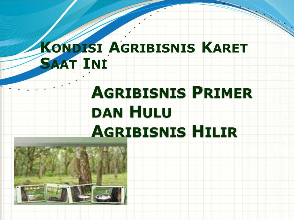 Agribisnis Primer dan Hulu Secara umum,pengusahaan perkebuna karet di Indonesia dibagi dalam beberapa kelompok yaitu sebagai berikut.