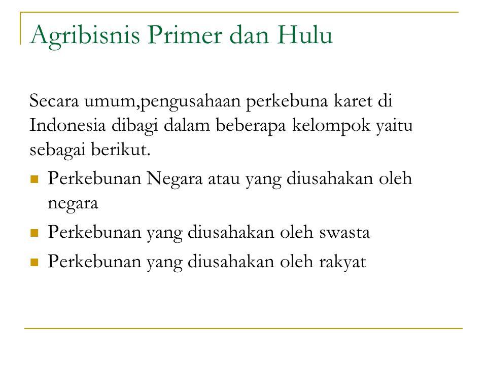 Agribisnis Primer dan Hulu Secara umum,pengusahaan perkebuna karet di Indonesia dibagi dalam beberapa kelompok yaitu sebagai berikut. Perkebunan Negar