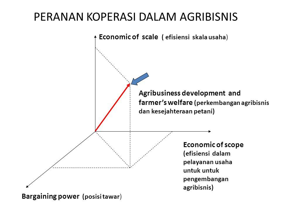 PERANAN KOPERASI DALAM AGRIBISNIS Bargaining power (posisi tawar) Economic of scope (efisiensi dalam pelayanan usaha untuk untuk pengembangan agribisn