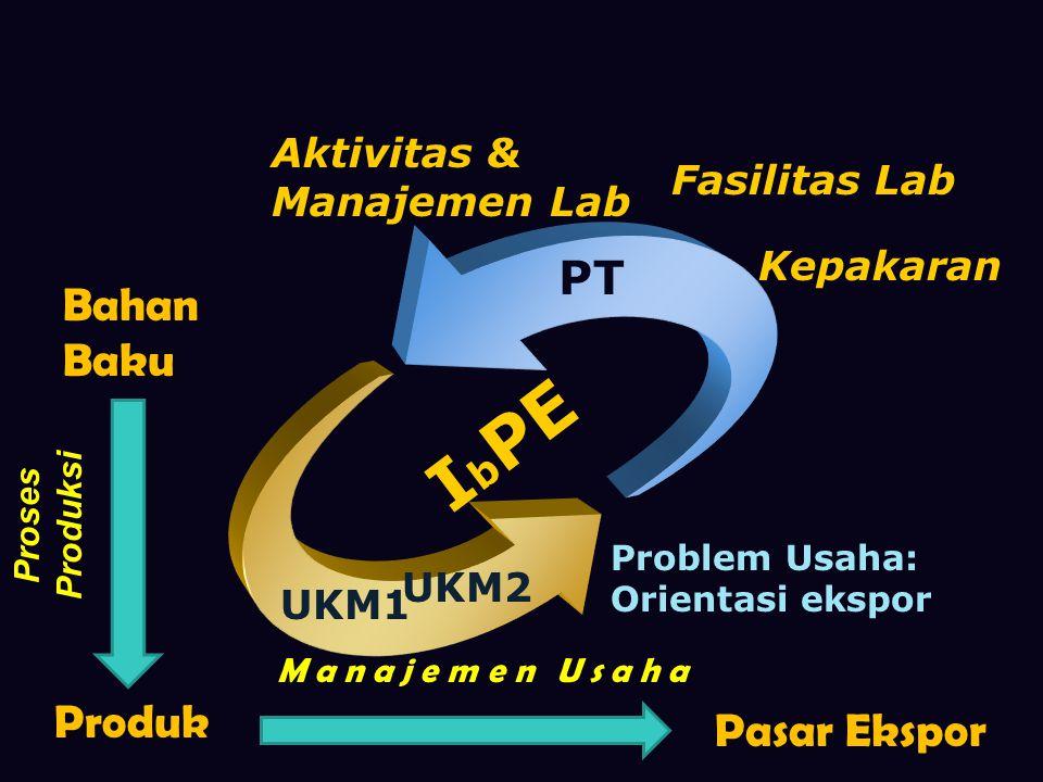 Kepakaran Problem Usaha: Orientasi ekspor PT UKM2 I b PE Fasilitas Lab Aktivitas & Manajemen Lab Bahan Baku Produk Pasar Ekspor Proses Produksi Manajemen Usaha UKM1