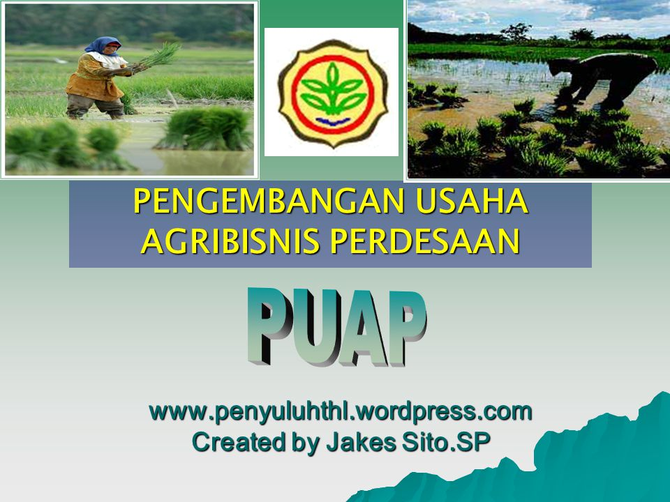 PENGEMBANGAN USAHA AGRIBISNIS PERDESAAN www.penyuluhthl.wordpress.com Created by Jakes Sito.SP