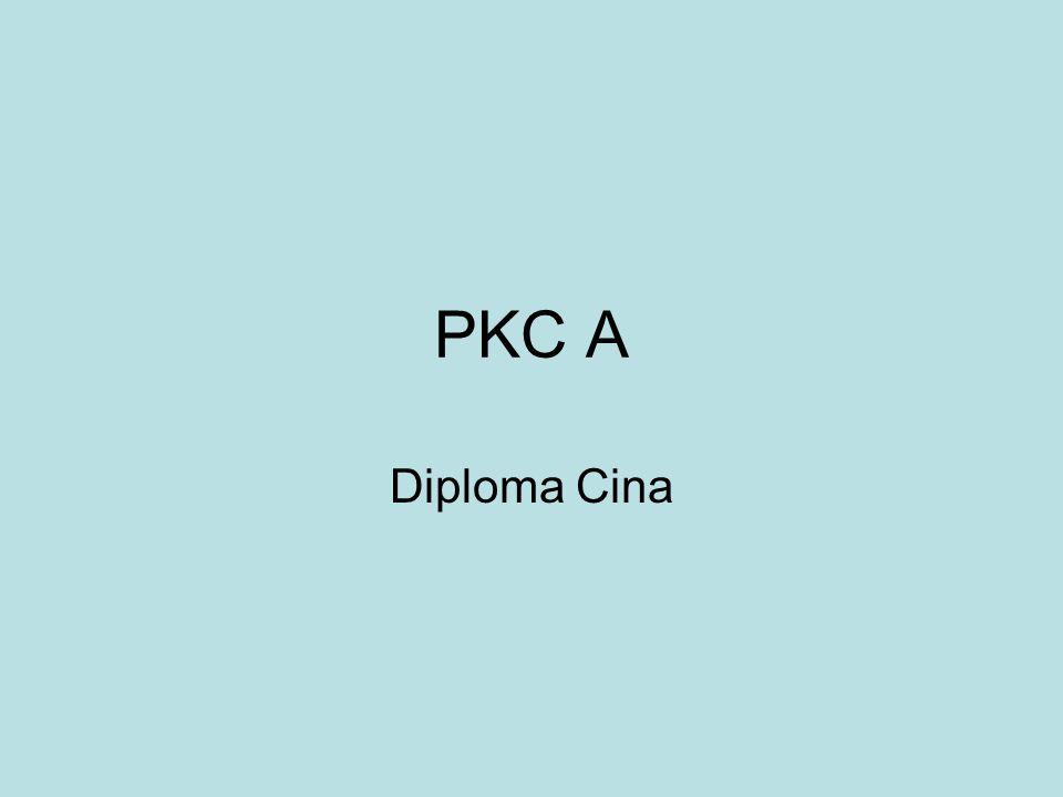 PKC A Diploma Cina