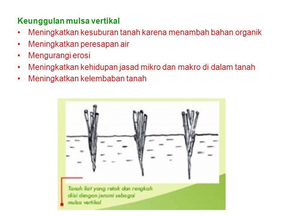 Keunggulan mulsa vertikal Meningkatkan kesuburan tanah karena menambah bahan organik Meningkatkan peresapan air Mengurangi erosi Meningkatkan kehidupan jasad mikro dan makro di dalam tanah Meningkatkan kelembaban tanah
