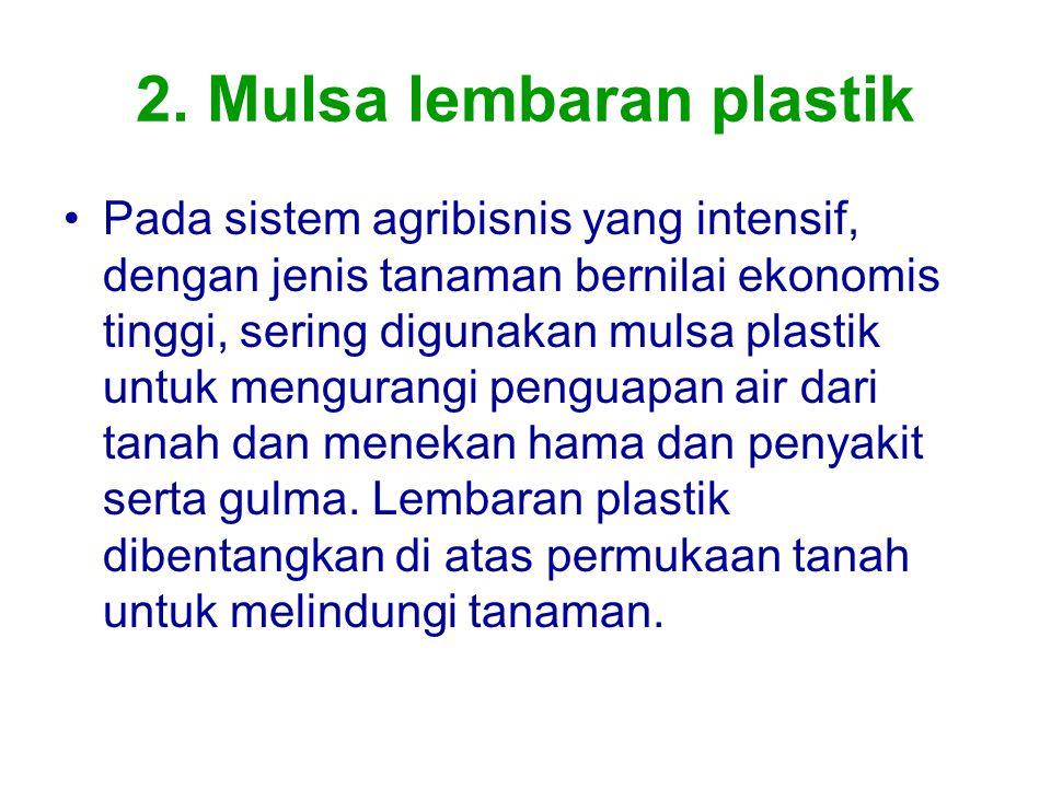 2. Mulsa lembaran plastik Pada sistem agribisnis yang intensif, dengan jenis tanaman bernilai ekonomis tinggi, sering digunakan mulsa plastik untuk me