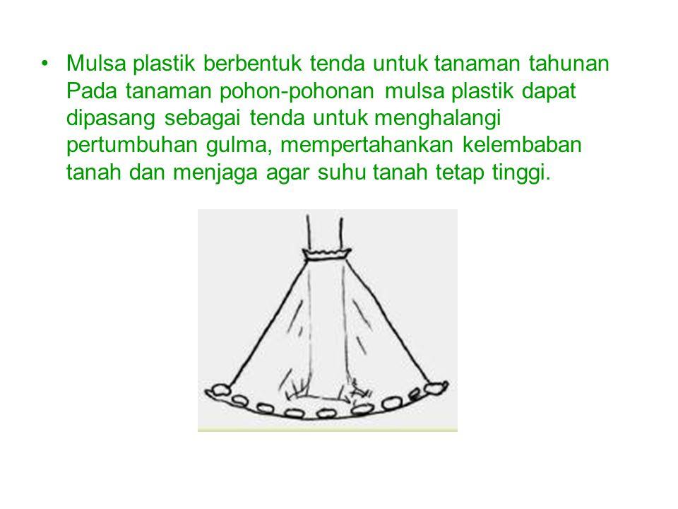 Mulsa plastik berbentuk tenda untuk tanaman tahunan Pada tanaman pohon-pohonan mulsa plastik dapat dipasang sebagai tenda untuk menghalangi pertumbuhan gulma, mempertahankan kelembaban tanah dan menjaga agar suhu tanah tetap tinggi.