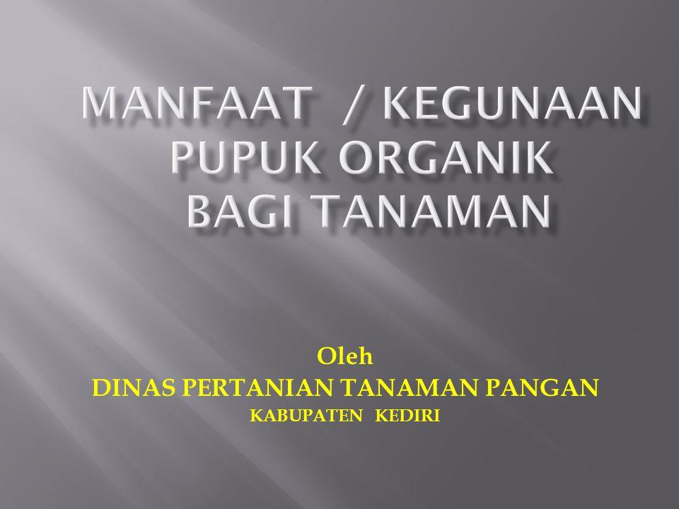 Oleh DINAS PERTANIAN TANAMAN PANGAN KABUPATEN KEDIRI