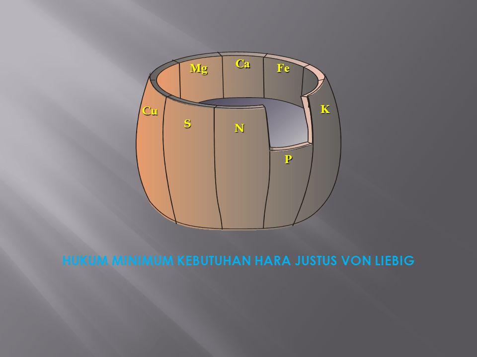 Nama PupukNP2O5P2O5 K2OK2OHara Lain UREA46--- SP – 28-28-- KCL--60- Z K--50Sulfur 17 % Z A20--Sulfur 23 % Kapten---CaCO 3 85 % Phonska15 D A P1846- M A P1260- M K P-5032 KNO 3 13-46