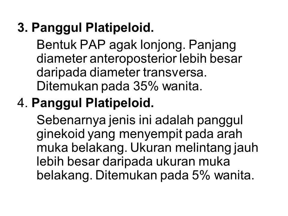 3. Panggul Platipeloid. Bentuk PAP agak lonjong. Panjang diameter anteroposterior lebih besar daripada diameter transversa. Ditemukan pada 35% wanita.