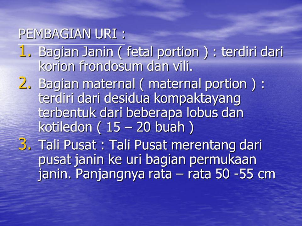 PEMBAGIAN URI : 1. Bagian Janin ( fetal portion ) : terdiri dari korion frondosum dan vili. 2. Bagian maternal ( maternal portion ) : terdiri dari des