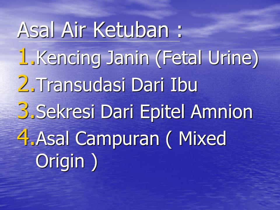 Asal Air Ketuban : 1. K encing Janin (Fetal Urine) 2. T ransudasi Dari Ibu 3. S ekresi Dari Epitel Amnion 4. A sal Campuran ( Mixed Origin )