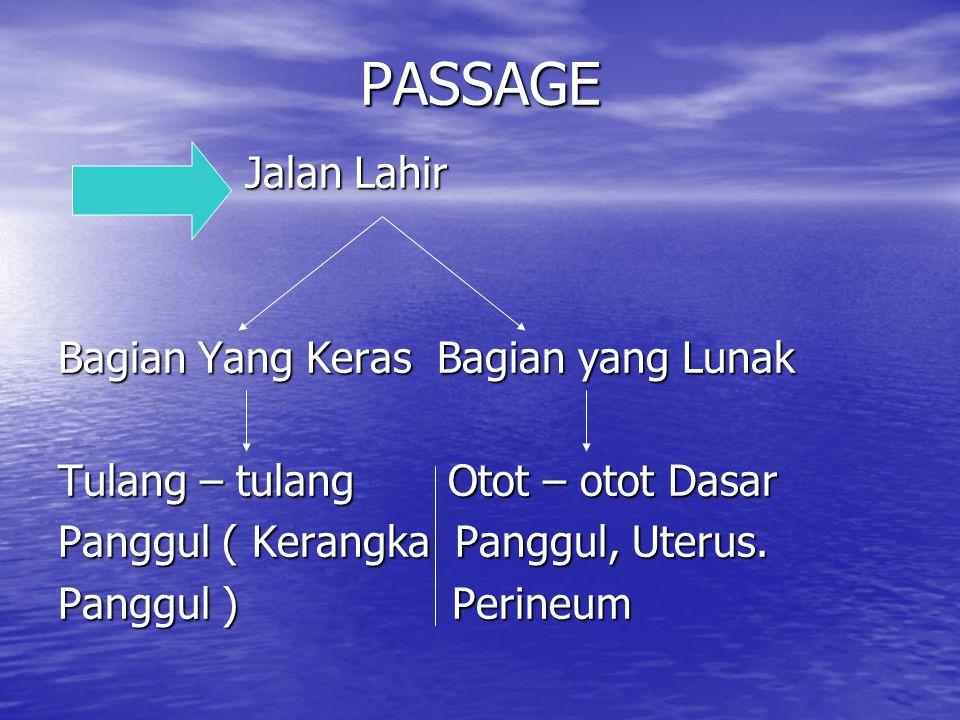 Asal Air Ketuban : 1.K encing Janin (Fetal Urine) 2.