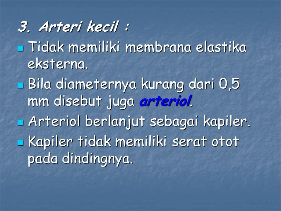 3. Arteri kecil : Tidak memiliki membrana elastika eksterna. Tidak memiliki membrana elastika eksterna. Bila diameternya kurang dari 0,5 mm disebut ju