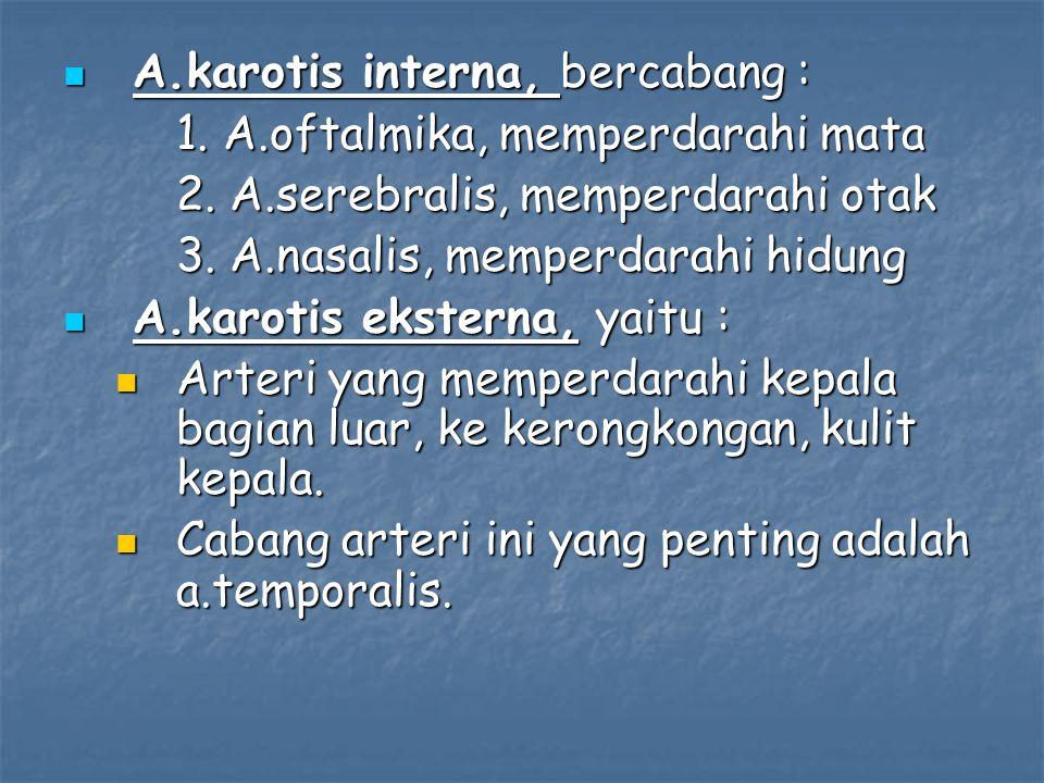 A.karotis interna, bercabang : A.karotis interna, bercabang : 1. A.oftalmika, memperdarahi mata 2. A.serebralis, memperdarahi otak 3. A.nasalis, mempe