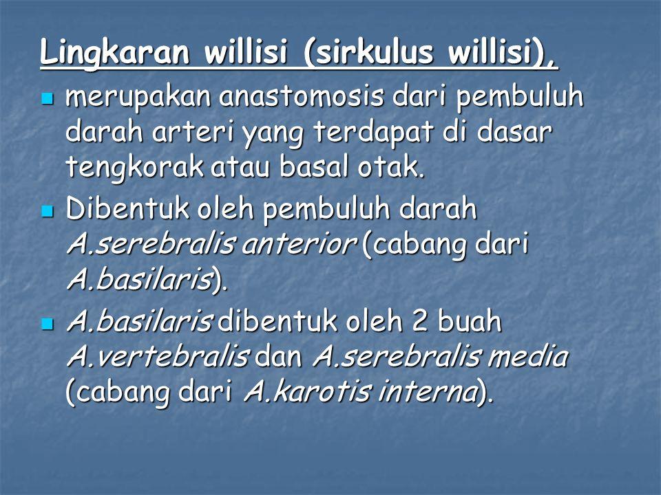 Lingkaran willisi (sirkulus willisi), merupakan anastomosis dari pembuluh darah arteri yang terdapat di dasar tengkorak atau basal otak.