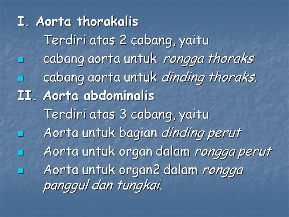 I. Aorta thorakalis Terdiri atas 2 cabang, yaitu cabang aorta untuk rongga thoraks cabang aorta untuk rongga thoraks cabang aorta untuk dinding thorak