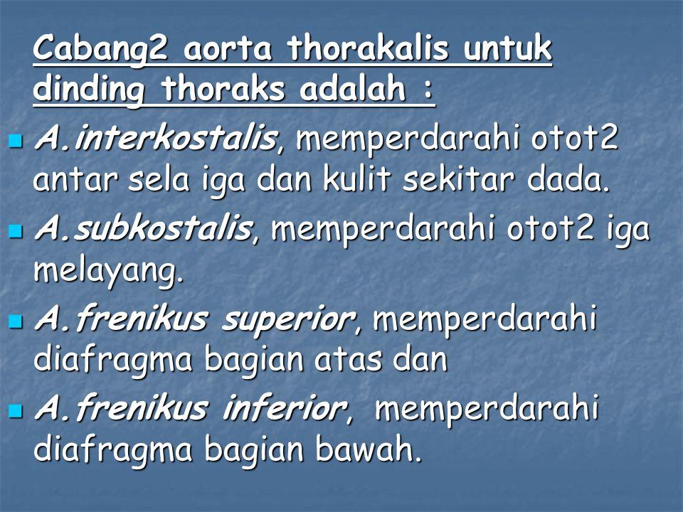 Cabang2 aorta thorakalis untuk dinding thoraks adalah : A.interkostalis, memperdarahi otot2 antar sela iga dan kulit sekitar dada.