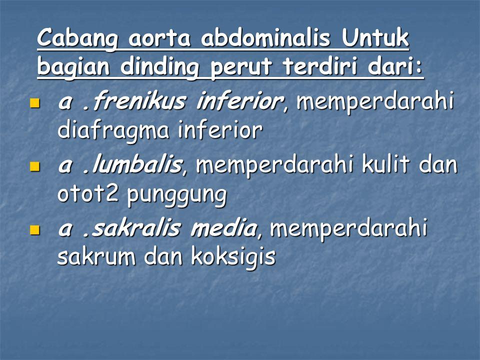 Cabang aorta abdominalis Untuk bagian dinding perut terdiri dari: a.frenikus inferior, memperdarahi diafragma inferior a.frenikus inferior, memperdara