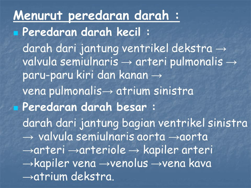 Menurut peredaran darah : Peredaran darah kecil : darah dari jantung ventrikel dekstra → valvula semiulnaris → arteri pulmonalis → paru-paru kiri dan