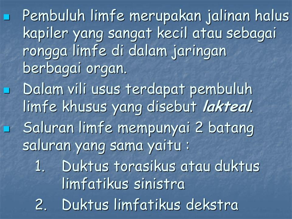 Pembuluh limfe merupakan jalinan halus kapiler yang sangat kecil atau sebagai rongga limfe di dalam jaringan berbagai organ. Pembuluh limfe merupakan