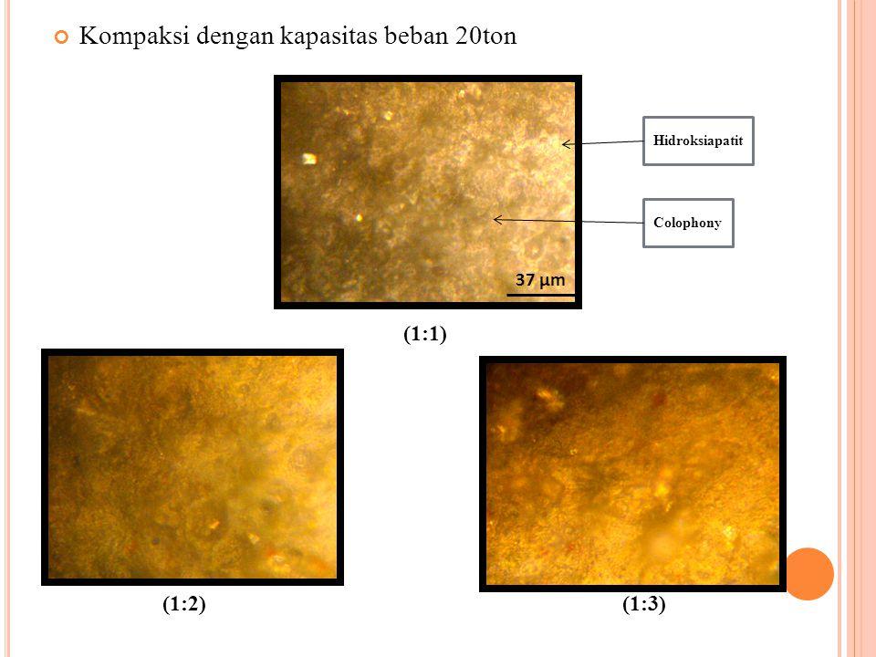 Kompaksi dengan kapasitas beban 20ton (1:1) (1:2) (1:3) Hidroksiapatit Colophony 37 µm