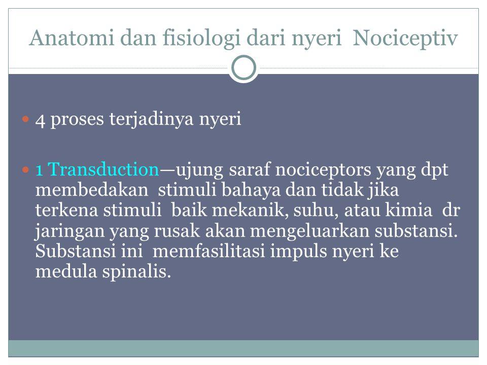 Anatomi dan fisiologi dari nyeri Nociceptiv 4 proses terjadinya nyeri 1 Transduction—ujung saraf nociceptors yang dpt membedakan stimuli bahaya dan ti