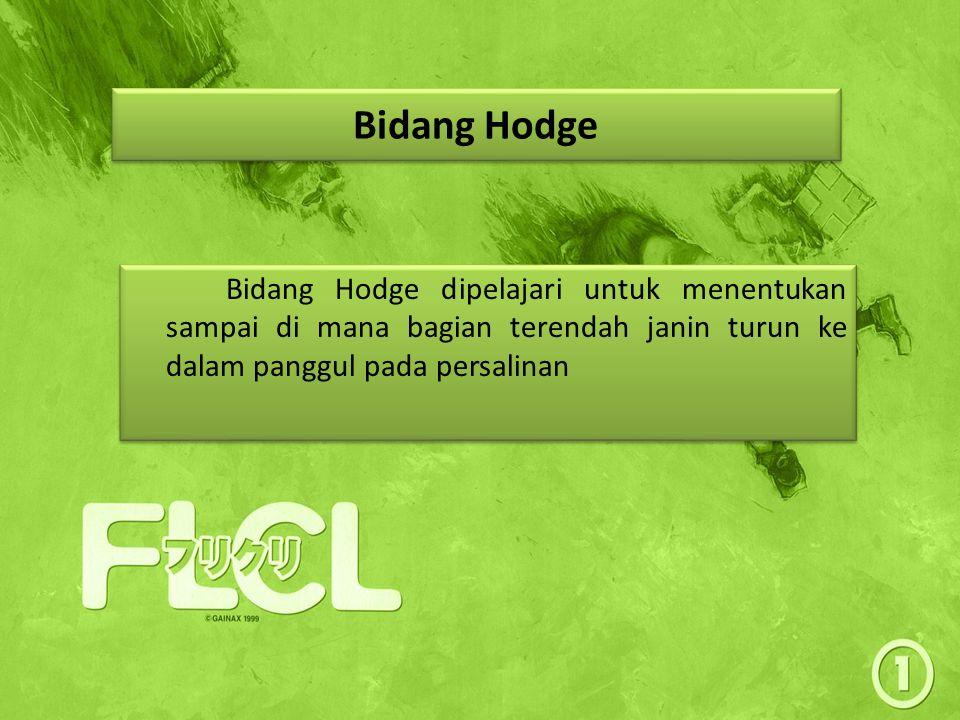 Bidang Hodge Bidang Hodge dipelajari untuk menentukan sampai di mana bagian terendah janin turun ke dalam panggul pada persalinan