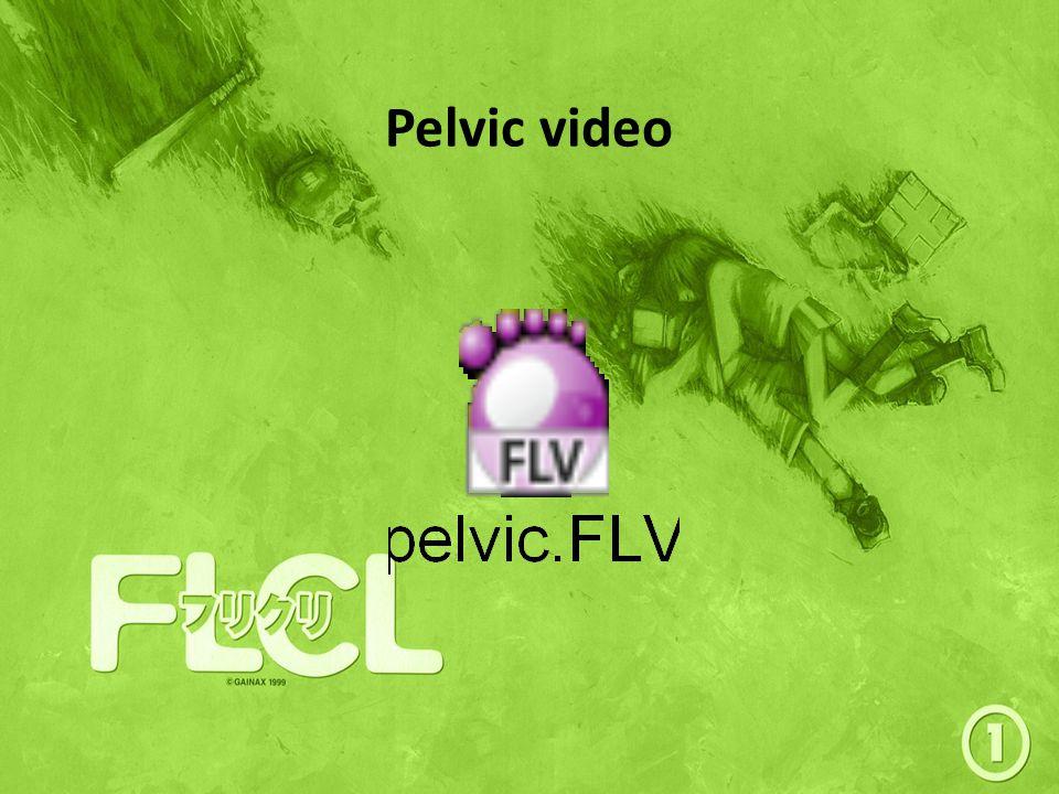 Pelvic video
