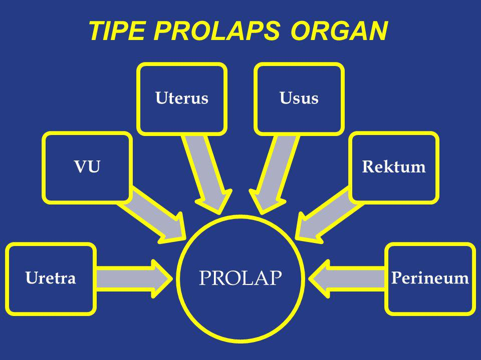 Normal Anterior wall Uterus / vault Posterior wall anteriormiddleposterior compartment Prolap Organ Panggul Elongatio Coli