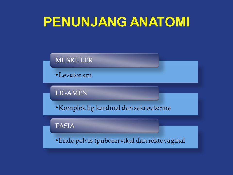 Klasifikasi DeLancey Level I Fasia endopelvis Level II Diafragma pelvis Level III Diafragma urogenital (membran perineal)