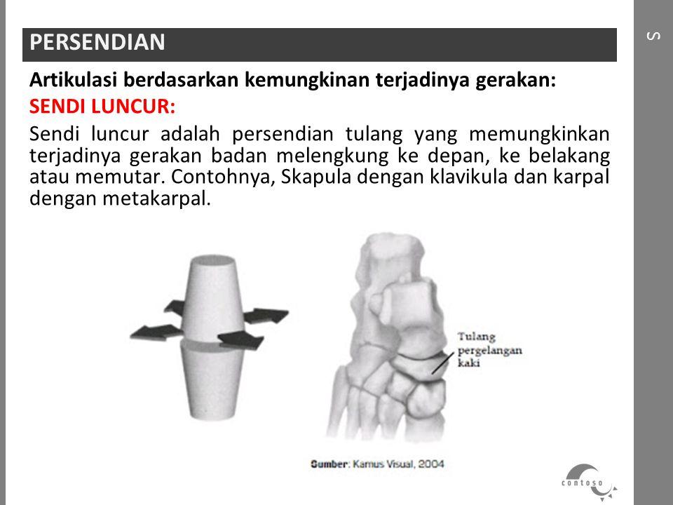 Artikulasi berdasarkan kemungkinan terjadinya gerakan: SENDI LUNCUR: Sendi luncur adalah persendian tulang yang memungkinkan terjadinya gerakan badan