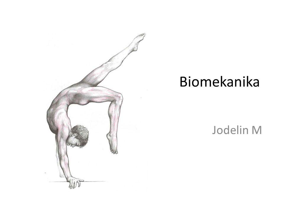 Keseimbangan dan Stabilitas Melibatkan : Musculoskeletal system : Bones, Cartilage, Joints, Skeletal muscles  Fungsi pendukung dan gerakan.