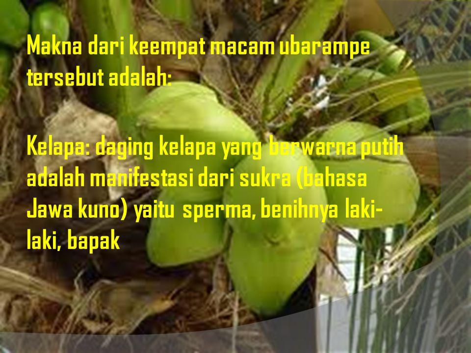 Gula Jawa: berwarna merah adalah manifestasi dari swanita (bahasa Jawa kuno) yaitu sel telur, benihnya wanita, ibu.