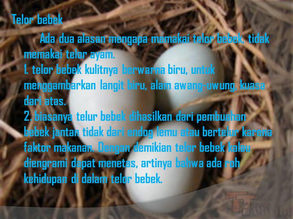 Telor bebek Ada dua alasan mengapa memakai telor bebek, tidak memakai telor ayam. 1. telor bebek kulitnya berwarna biru, untuk menggambarkan langit bi