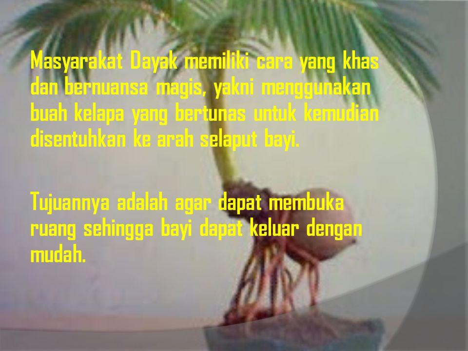 Masyarakat Dayak memiliki cara yang khas dan bernuansa magis, yakni menggunakan buah kelapa yang bertunas untuk kemudian disentuhkan ke arah selaput b