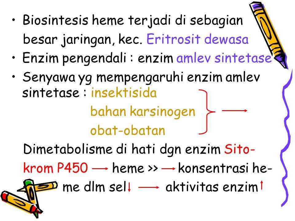 Biosintesis heme terjadi di sebagian besar jaringan, kec. Eritrosit dewasa Enzim pengendali : enzim amlev sintetase Senyawa yg mempengaruhi enzim amle