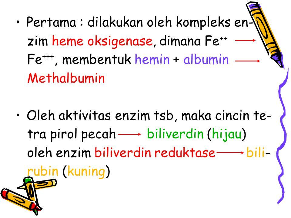 Pertama : dilakukan oleh kompleks en- zim heme oksigenase, dimana Fe ++ Fe +++, membentuk hemin + albumin Methalbumin Oleh aktivitas enzim tsb, maka c