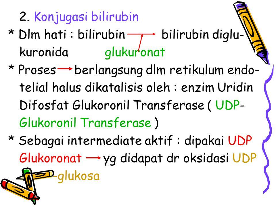 2. Konjugasi bilirubin * Dlm hati : bilirubin bilirubin diglu- kuronida glukuronat * Proses berlangsung dlm retikulum endo- telial halus dikatalisis o