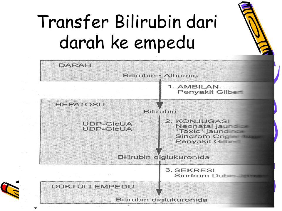Transfer Bilirubin dari darah ke empedu