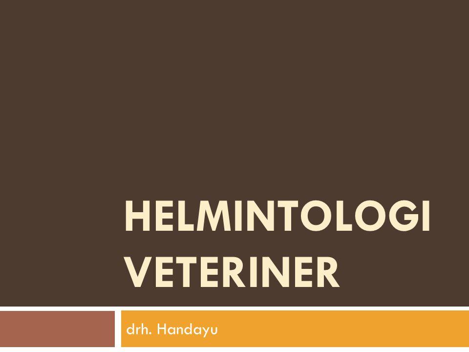 HELMINTOLOGI VETERINER drh. Handayu