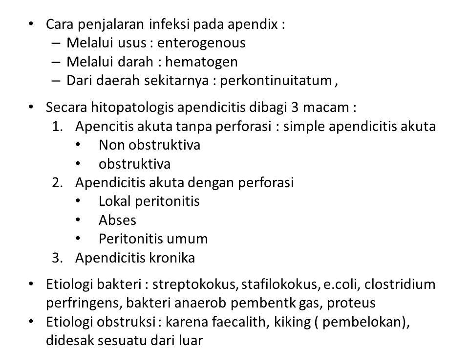 Cara penjalaran infeksi pada apendix : – Melalui usus : enterogenous – Melalui darah : hematogen – Dari daerah sekitarnya : perkontinuitatum, Secara h