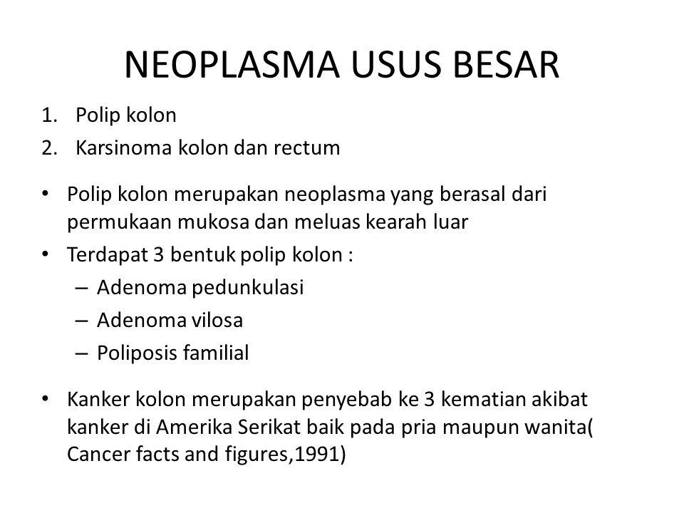 NEOPLASMA USUS BESAR 1.Polip kolon 2.Karsinoma kolon dan rectum Polip kolon merupakan neoplasma yang berasal dari permukaan mukosa dan meluas kearah l