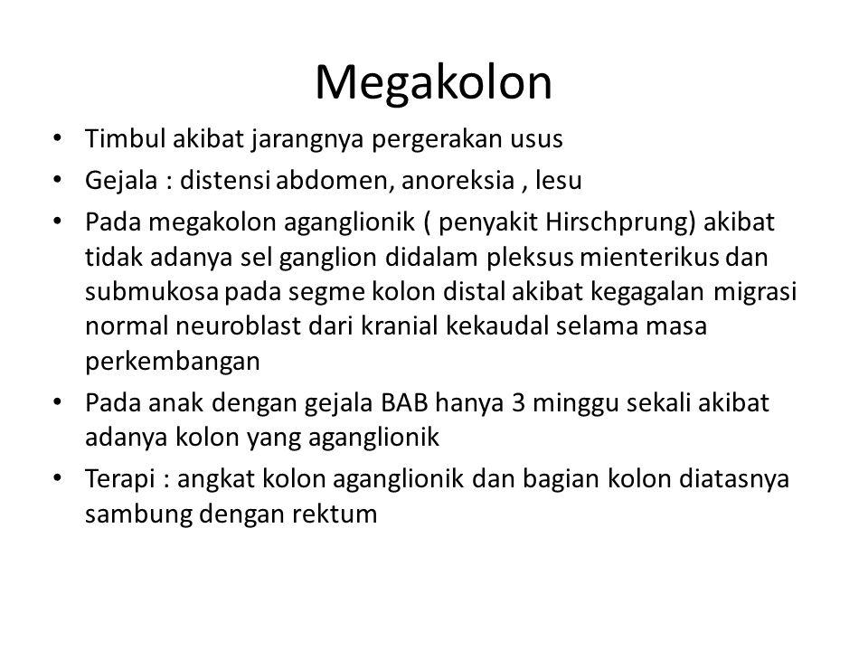 Megakolon Timbul akibat jarangnya pergerakan usus Gejala : distensi abdomen, anoreksia, lesu Pada megakolon aganglionik ( penyakit Hirschprung) akibat
